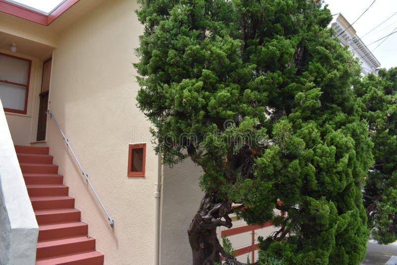 Ett övergett familjhus San Francisco, 2 royaltyfria bilder