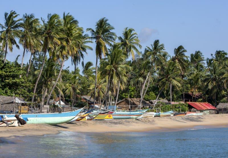 Ett avsnitt av stranden på den Arugam fjärden royaltyfri bild