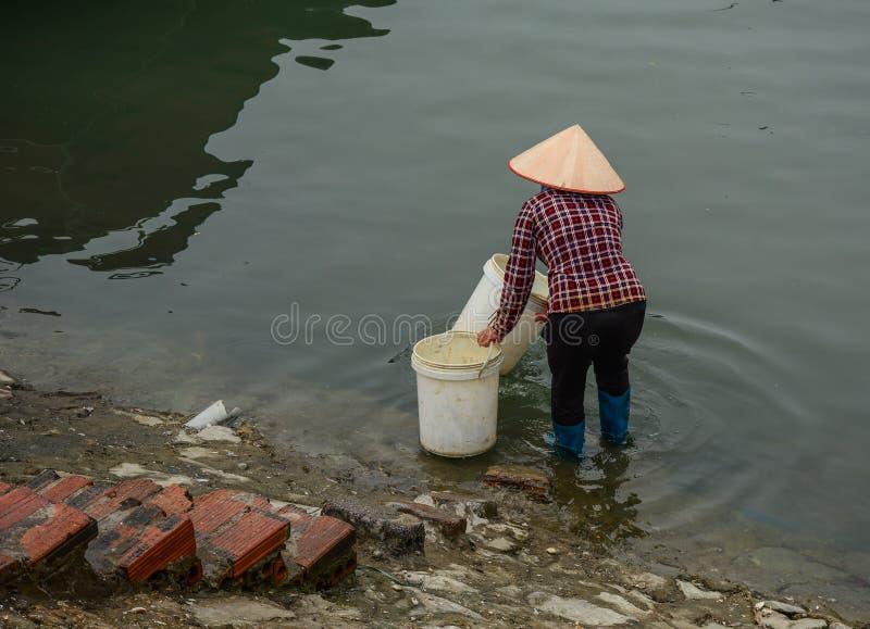 Ett bärande vatten för vietnamesisk kvinna arkivfoto