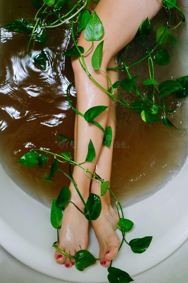 Ett bad av flora royaltyfria bilder