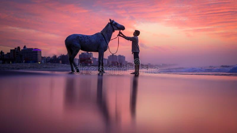 Ett barn med en häst på stranden royaltyfria foton