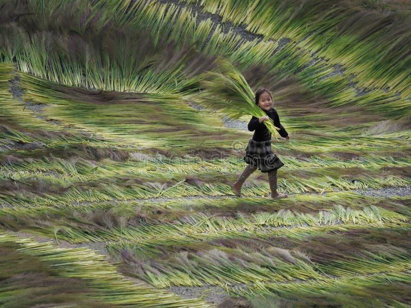 Ett barn som spelar, Dien Bien Phu Province arkivfoton
