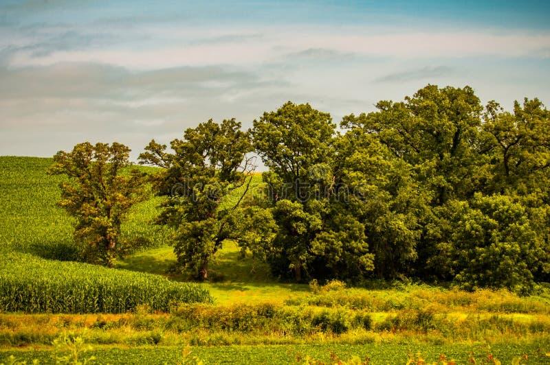 Ett bedöva landskap av härliga lantliga Iowa arkivfoto