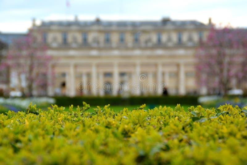Ett besök till Palais Royal arkivbild
