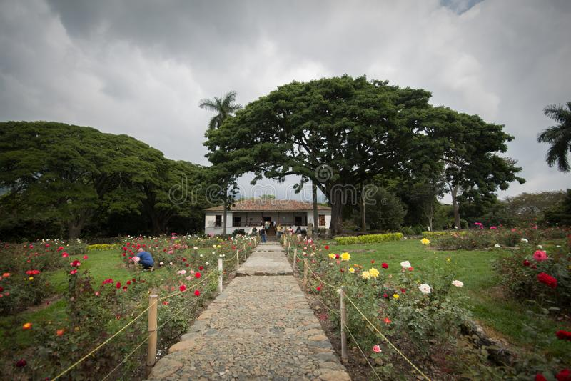 Ett blommafält och ett landshus nära Cali Colombia arkivfoton