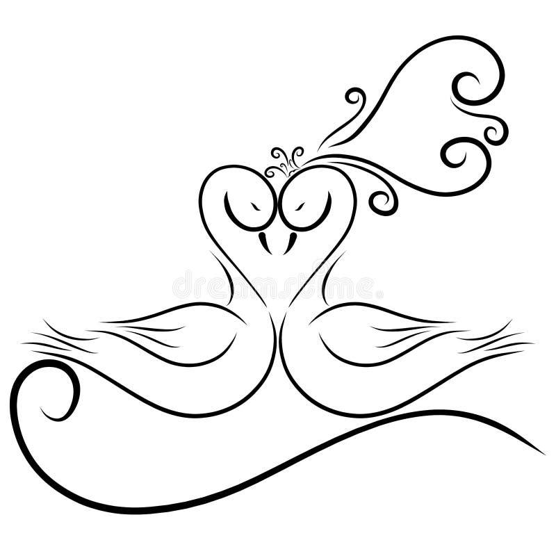 Ett charmigt par av svanar, mjukhet, bröllopmodell vektor illustrationer