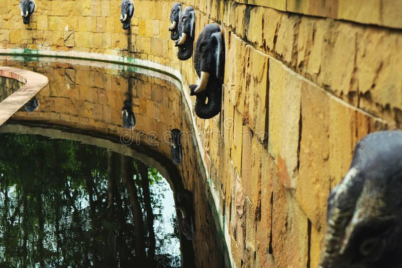 Ett damm med elefantspringbrunnar fotografering för bildbyråer