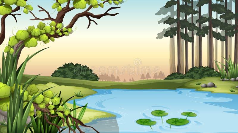 Ett damm på djungeln royaltyfri illustrationer