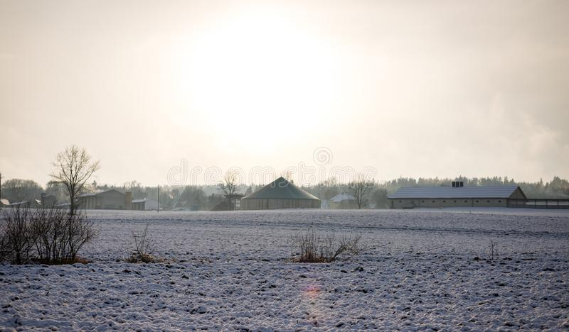 Ett djupfryst fält med snö och skog i bakgrunden i mitt av ingenstans på en kall klar dag i vinter royaltyfri bild