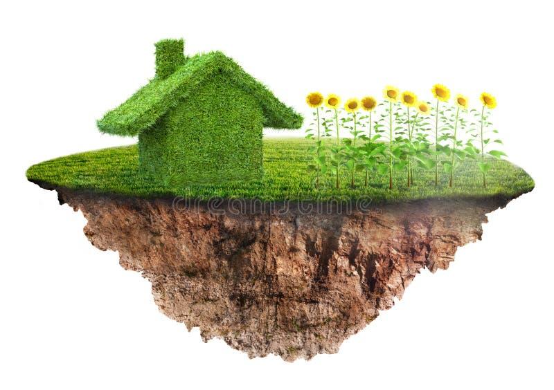 Ett ecohusbegrepp som göras av gräs vektor illustrationer