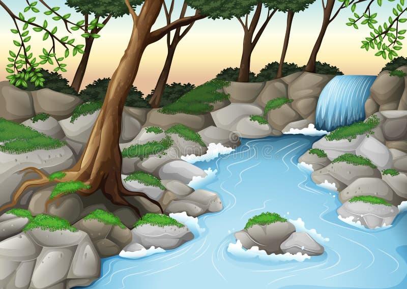 Ett ekosystem royaltyfri illustrationer