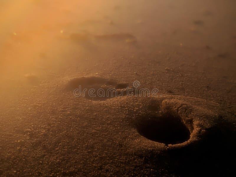 Ett enda fotsteg i Sand arkivfoton