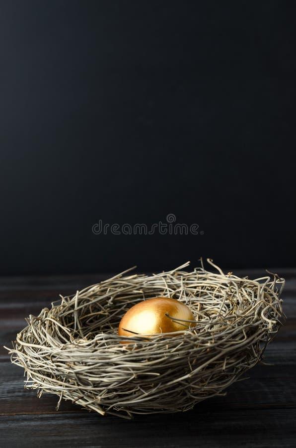 Ett enkelt guld- ägg i rede för fågel` s på trä med svart bakgrund arkivfoto