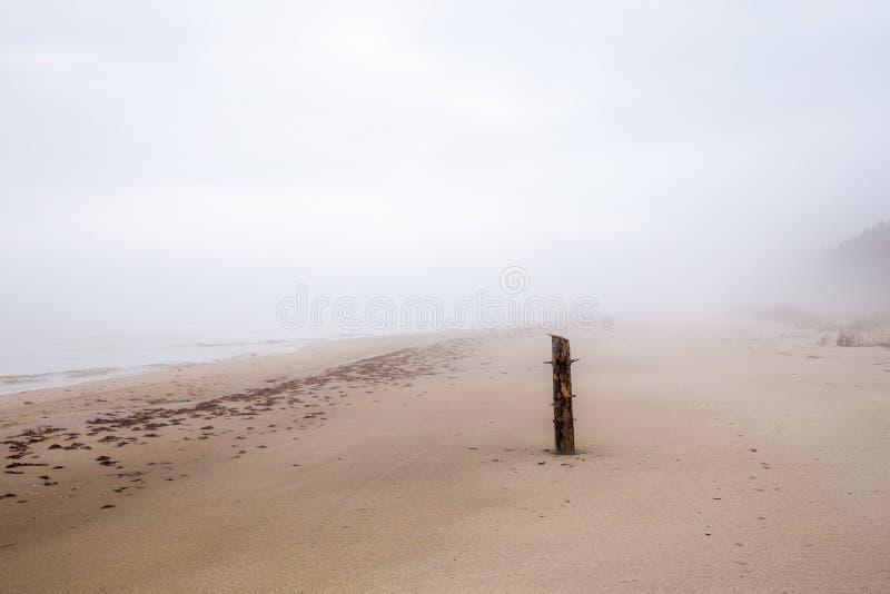 Ett ensamt stycke av en träpelare på en dimmig kust arkivfoton
