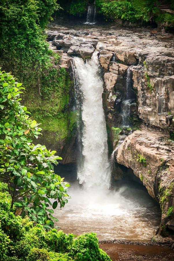 Ett exotiskt, landskapvattenfall som döljas i tropisk djungelregnskog arkivfoto