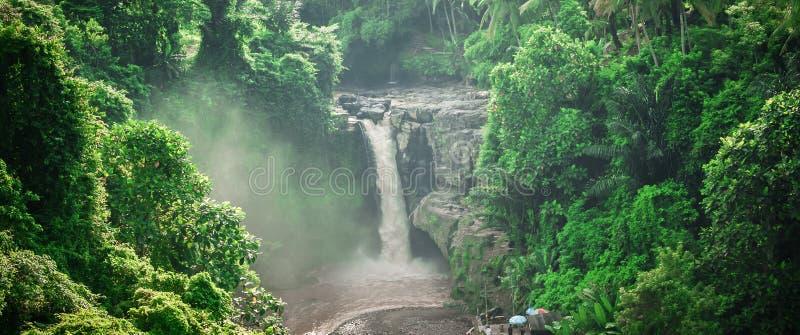 Ett exotiskt, landskapvattenfall som döljas i tropiskt djungelregn fo fotografering för bildbyråer