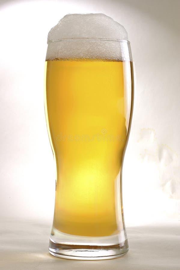 Ett exponeringsglas av öl arkivfoto
