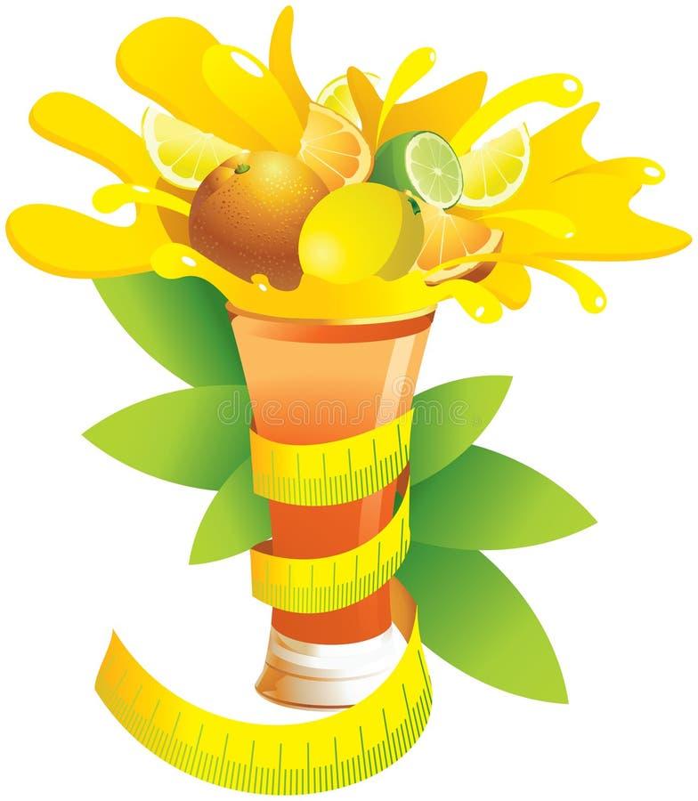 Ett exponeringsglas av citrusfrukt och ett cm royaltyfri illustrationer