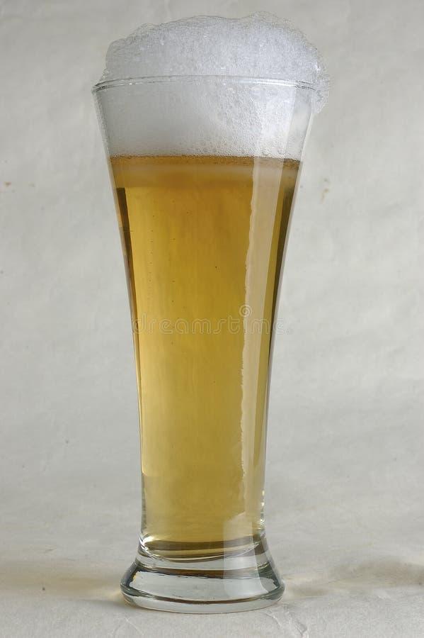 Ett exponeringsglas av ljus öl arkivfoton