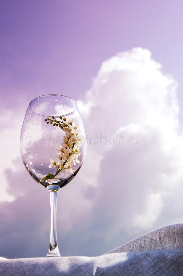 Ett exponeringsglas med en kvist av h?ggst?llningar p? en textilservett p? banken av floden under solen Korallsignal arkivbilder
