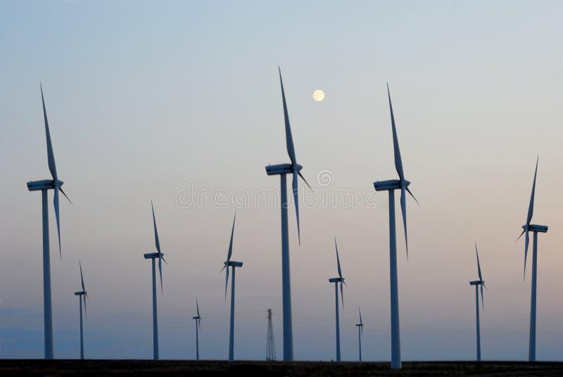 Ett fält av vindturbiner - Apulia - Italien royaltyfria foton