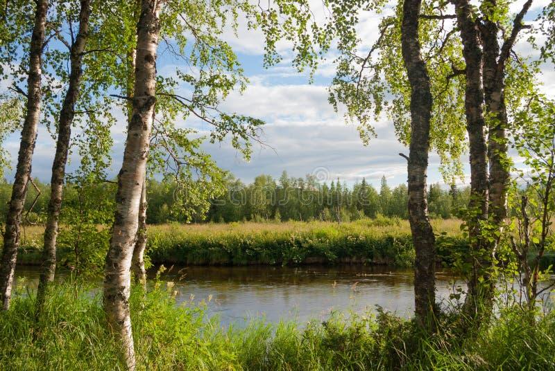 Ett flodstrandlandskap fotografering för bildbyråer