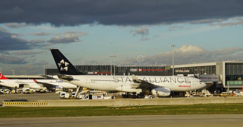 Ett flygplan för flygbuss A330 från det colombianska flygbolaget Avianca (AV) med en Star Alliance livré fotografering för bildbyråer
