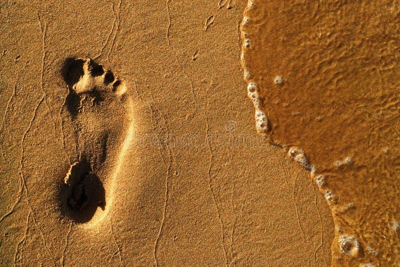 Ett fotspår i sanden arkivbild