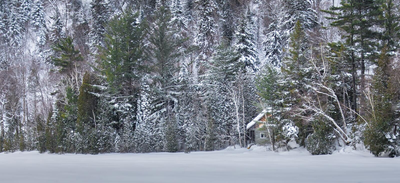 Ett fridsamt ställe i snön royaltyfria bilder