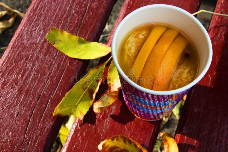 Ett fruktte med nya apelsiner och mandariner royaltyfri bild