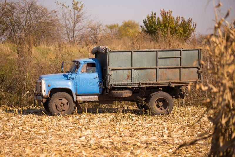 Ett gammalt retro sovjetiskt stag ett fält för att skörda mot en blå himmel på en solig dag Tema av transport och jordbruks- in arkivfoton