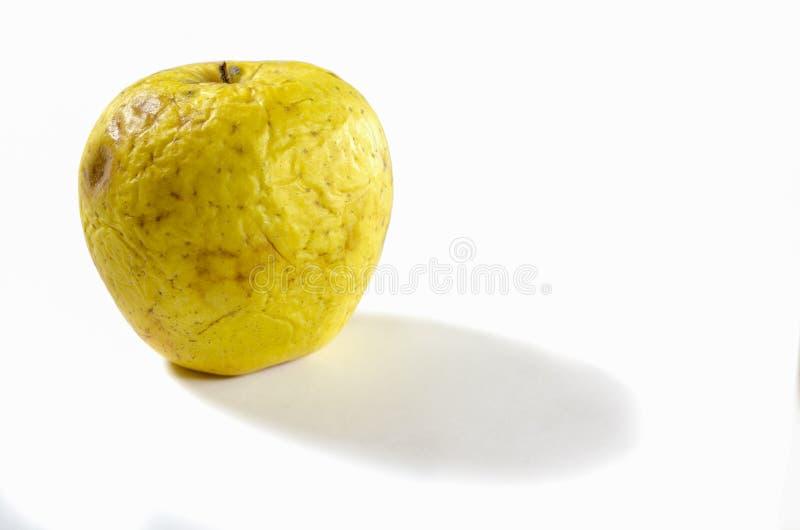 Ett gammalt rynkigt äpple som ligger på en vit bakgrund arkivfoton