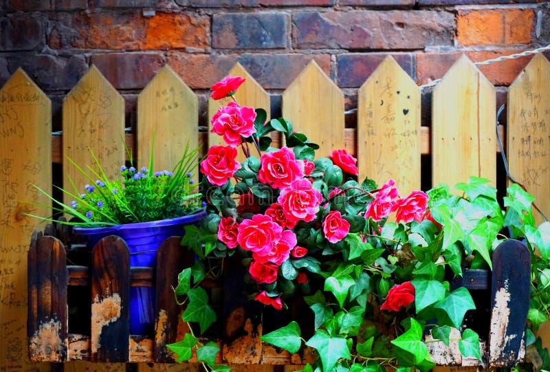 Ett gammalt staket fyllde med blommor som hänger på en vägg för röd tegelsten royaltyfri fotografi