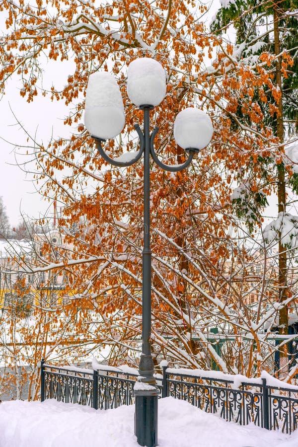 Ett gataljus som täckas av snö på bakgrunden av trädet med röd frukt på dess filialer i en liten vinterstad fotografering för bildbyråer