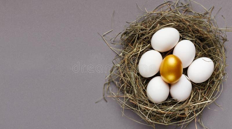 Ett guld- ägg bland vita ägg i rede arkivfoton