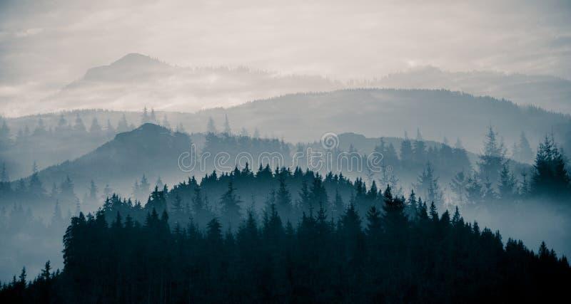 Ett härligt abstrakt monokromt berglandskap i blå tonalitet arkivbild