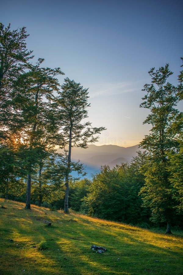 Ett härligt berglandskap på solnedgången h?rlig dagsommar Solen stiger ned bak träden Ett ursnyggt ljus royaltyfria foton