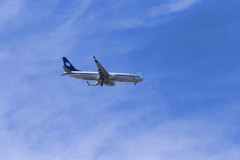 Ett härligt flygplan av Belavia flygbolag, modell Boeing 737 - 800 är det klart till att landa på Fiumicino den internationella f arkivbild