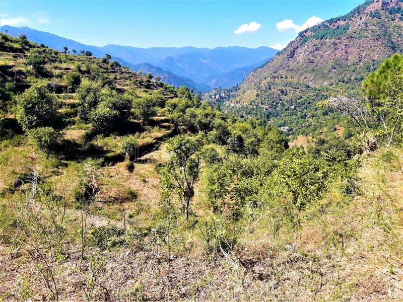 Ett härligt landskap som har grönska & berg royaltyfria bilder