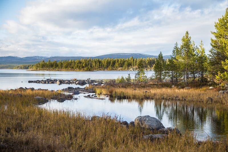 Ett härligt sjölandskap i den Femundsmarka nationalparken i Norge Sjö med avlägsna berg i bakgrund royaltyfri foto