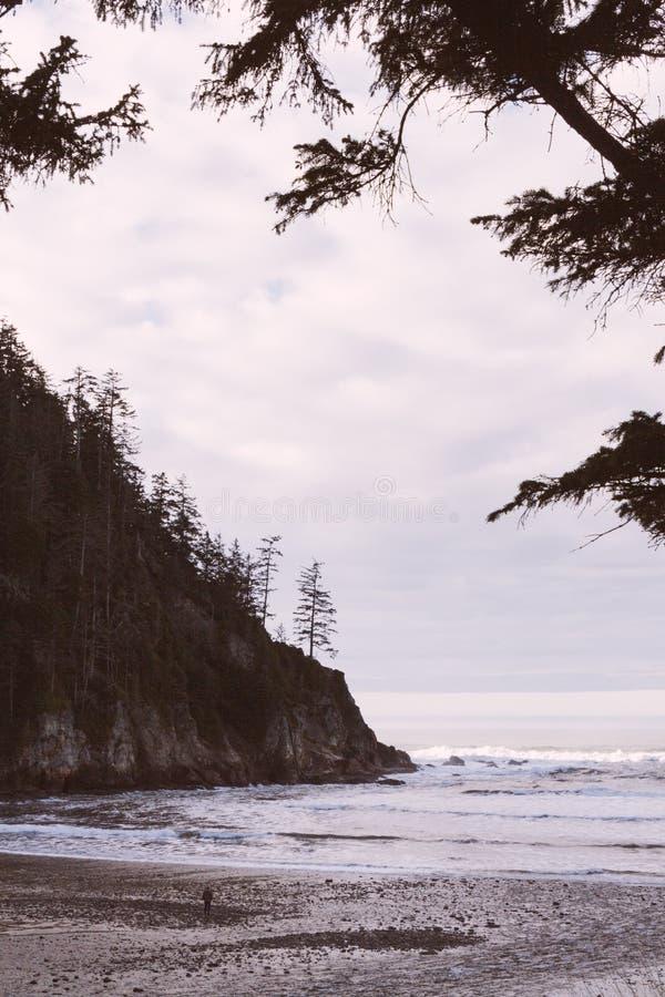 Ett härligt skott av en kust royaltyfria foton