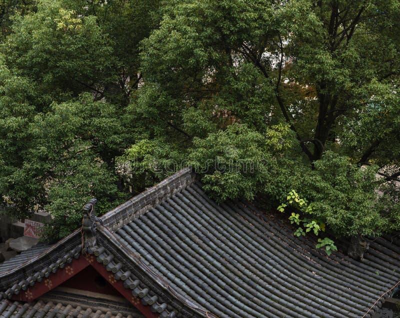 Ett hörn av templet arkivbild