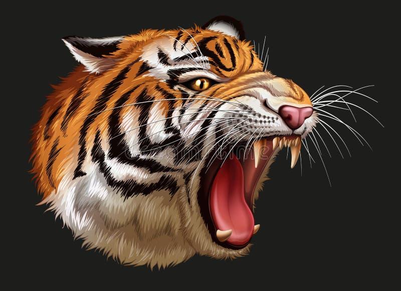 Ett huvud av en rytande tiger vektor illustrationer