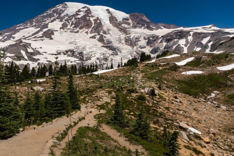 Ett korkat berg för snö, Mount Rainier, på vårtid med den fotvandra slingan som leder av in i avståndet royaltyfria foton