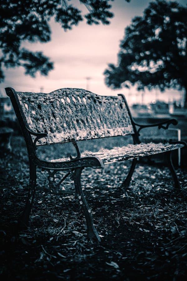 Ett kusligt bänkfoto som jag tog i en kyrkogård Detta skott skulle vara bra för fasa gällde projekt royaltyfri foto