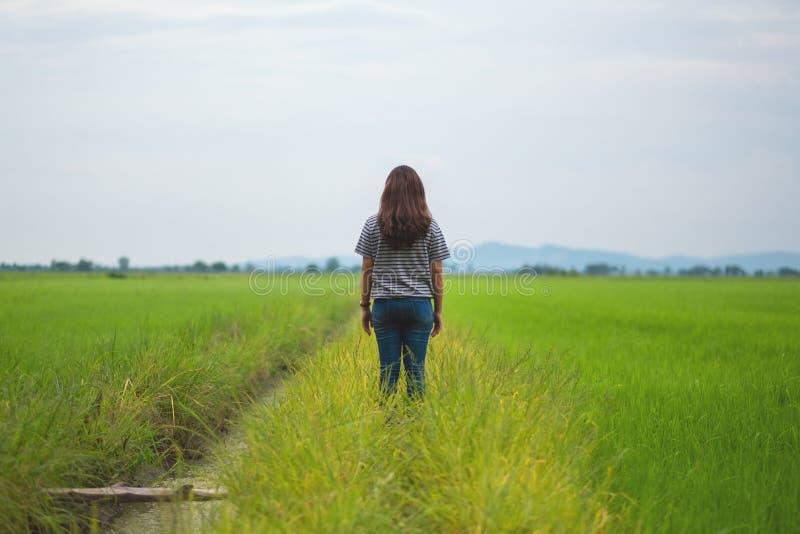 Ett kvinnaanseende och se en härlig risfält med mening avkopplat och lugna royaltyfri bild