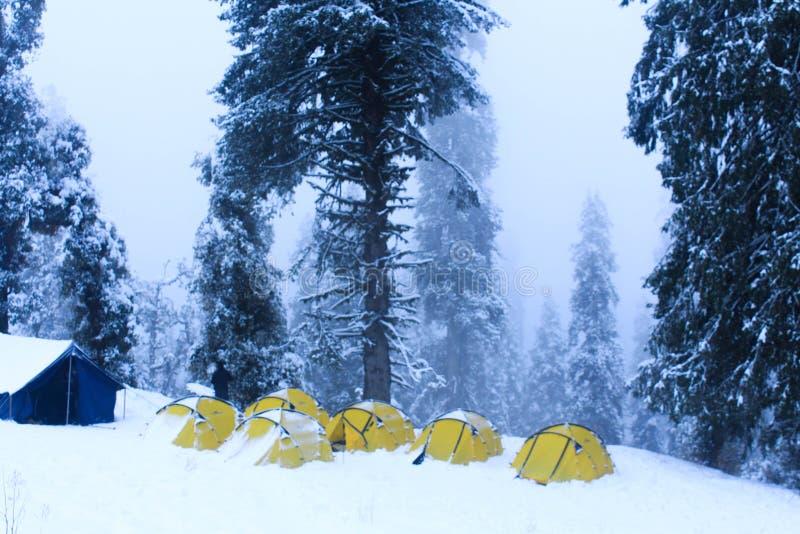 Ett läger i en skog under vinter royaltyfri foto
