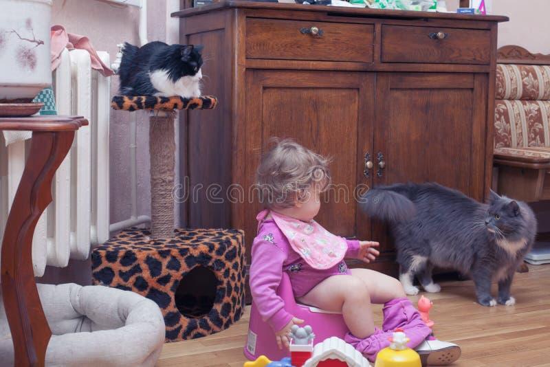 Ett litet barnbarn sitter på en potta arkivfoto