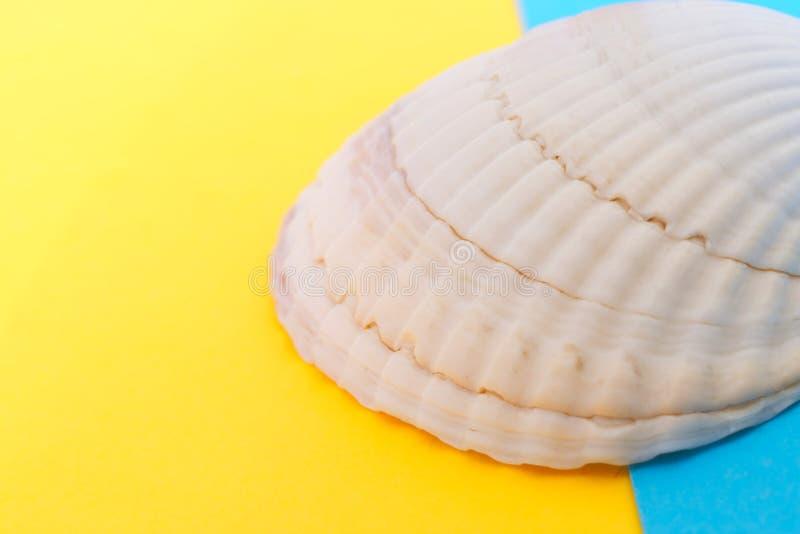 Ett ljust - rosa snäckskal på en guling och en blå bakgrund Objekt släkta för att resa och turism N?rbild grunt djupf?lt arkivfoton