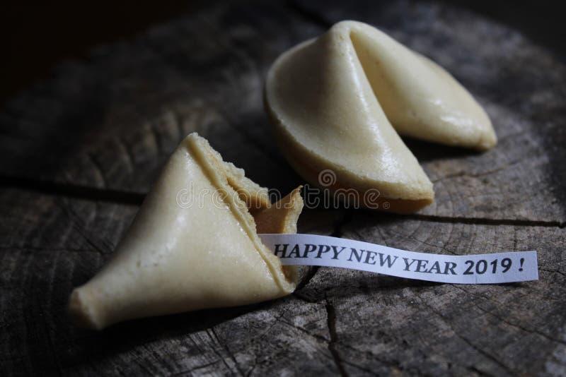 Ett lyckligt nytt år 2019! royaltyfria bilder